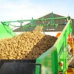 aardappelen poten, frezen en rooien
